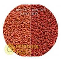 Краска для семян красная TERRA TZ-7, пшеница, ячмень, кукуруза, соя