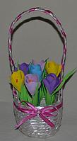 Композиция  крокусы в  корзине. Оригинальный подарок на 8-е марта