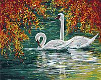 Картина-раскраска Осенний пруд с лебедями (BRM7039) 40 х 50 см