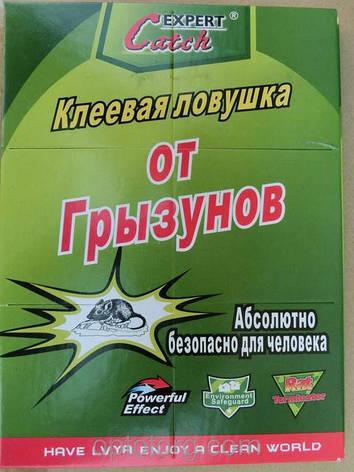 Клейова ловушка для вилову гризунів та комах 17х26 см 6692, фото 2