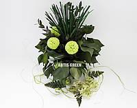 """Эко-сувениры ручной работы из стабилизированных растений  """"Artis Green"""""""