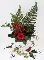 """Эко-сувениры ручной работы из стабилизированного мха и растений  """"Artis Green"""""""