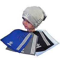 """Шапка детская для мальчиков """"Adidas-белый"""" 4-8 лет одинар. трикотаж Оптом"""