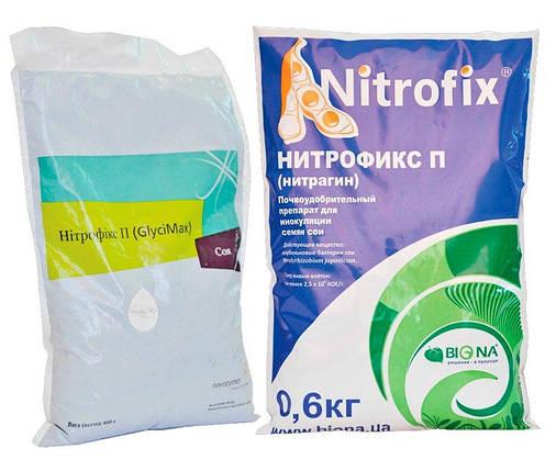 """Инокулянт """"Нитрофикс П"""" для сои на сухом стерильном торфе, 0,6 кг, фото 2"""