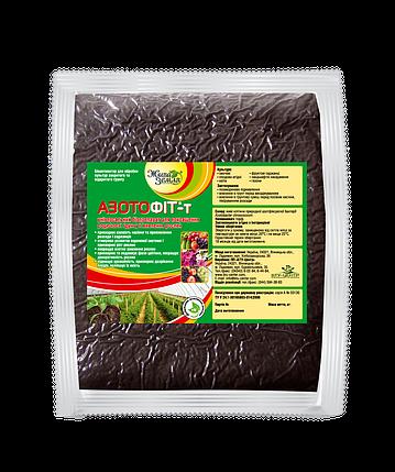 Препарат для плодородия почвы Азотофит - Т, фото 2