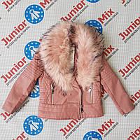 Демисезонная модная куртка для девочек кожзам оптом NOVO STYLE, фото 1