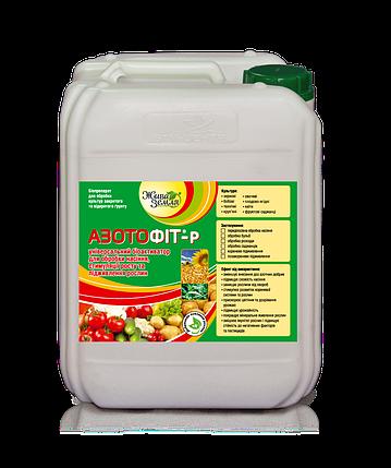 Азотофит-Р® - БИОАКТИВАТОР для питания и профилактики болезней, 5 л, фото 2