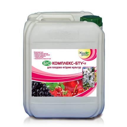 Биокомплекс-БТУ (для плодово-ягодных культур), 5 л, фото 2