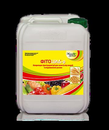 Фитоцид-Р® - биофунгицид для защиты растений от болезней, 10 л, фото 2