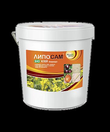 ЛИПОСАМ® концетрат,для предотвращения растрескивания плодов , 10 л, фото 2