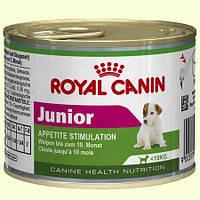 Royal Canin Junior Консерва для щенков мелких пород, 195г