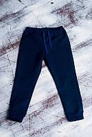 Детские штаны теплые с начесом для мальчика