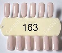 Гель лак Canni 163
