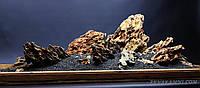"""Композиция для аквариума """"Дракон 171"""", фото 1"""