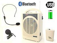 Портативная акустика MBA-2007 с беспроводным микрофоном (USB/Bluetooth)