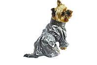 Плащ куртка дощовик для собак утеплений, фото 1