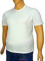 Футболка мужская Tommy Hilfiger 1176 белая больших размеров