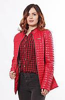 Курточка женская демисезон