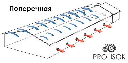 вентиляция в перепелятнике