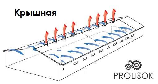 вентиляция птицефабрики