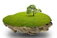 Приватизация садового участка. Приватизация дачного участка