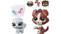 Littlest Pet Shop Литл Пет Шоп Маленький зоомагазин фигурки Branwyn Bloomer and Maybelle MacTuck Figures