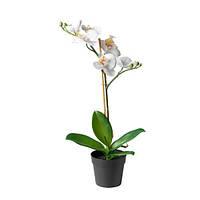 ФЕЙКА Искусственное растение в горшке, орхидея, белый, 00285908, ИКЕА, IKEA, FEJKA