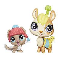 Littlest Pet Shop Littlest Pet Shop Литл Пет Шоп Маленький зоомагазин Yaya Peru and Softly Knox