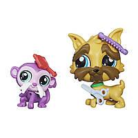 Littlest Pet Shop Литл Пет Шоп Маленький зоомагазин фигурки Pet Brussels Griffon Sam and Tamrin O'Monk