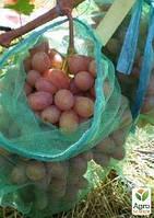 """Сетки от ос для винограда """"Полундра"""" 22х35"""