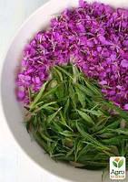 Иван-чай, трава 100г