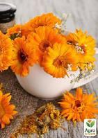 Календула, цветок 100г