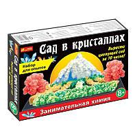 Набор для опытов Ranok-Creative Сад в кристаллах (12138011Р, 226893)