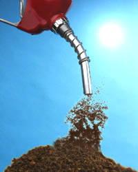 Создано биотопливо из кофейной гущи