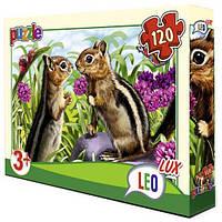 Пазлы Leo Lux Бельчата 120 элементов (351)