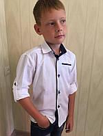 Рубашка белая с синей вставкой на воротнике и планке рукав трансформер