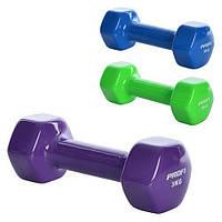 Гантель виниловая 3 кг PROFI M 0291 (фиолетовая, синяя и зеленая)