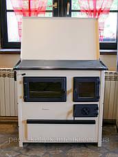 Варильна піч-кухня Trend MBS, фото 3
