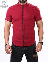 Мужская рубашка малинового цвета оптом и в разницу