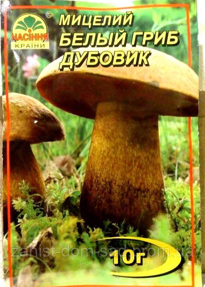 Мицелий Белый гриб Дубовик  10гр