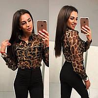 Женская блуза в леопардовый принт