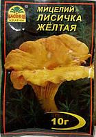 Мицелий гриба Лисичка Желтая, 10г