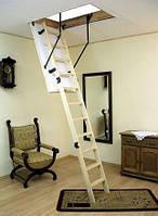 Складная чердачная лестница Oman Termo