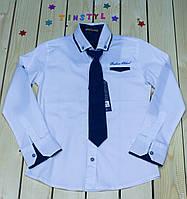 Стильная рубашка  для мальчика на рост 116-128 см, фото 1