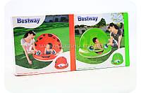 Детский надувной бассейн Bestway 52189 - 2 вида
