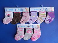 """Носки (3-6 месяцев) махровые для девочек """"YO SCORPIO""""  ПОЛЬША"""
