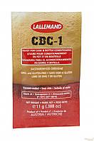 Пивные дрожжи Danstar CBC-1,  11 грамм
