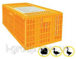 Ящик для перевозки гусей, индюков, уток 970х580х420 мм однодверный