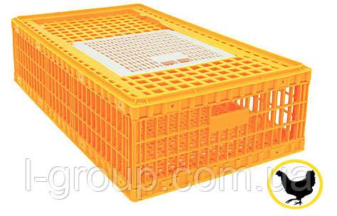 Ящик для перевезення живої птиці 970х580х270 мм однодверний