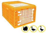 Ящик для перевозки гусей, индюков, уток 770х570х420 мм двухдверный